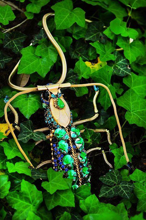 Bug ivy