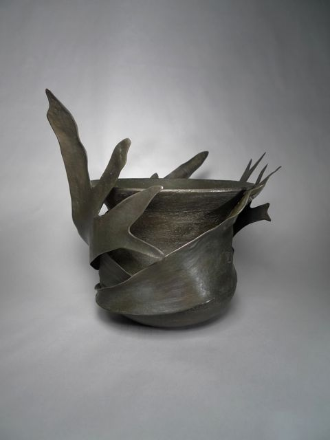 Staghorn 1